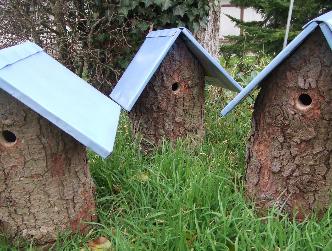 cabane oiseaux. Black Bedroom Furniture Sets. Home Design Ideas